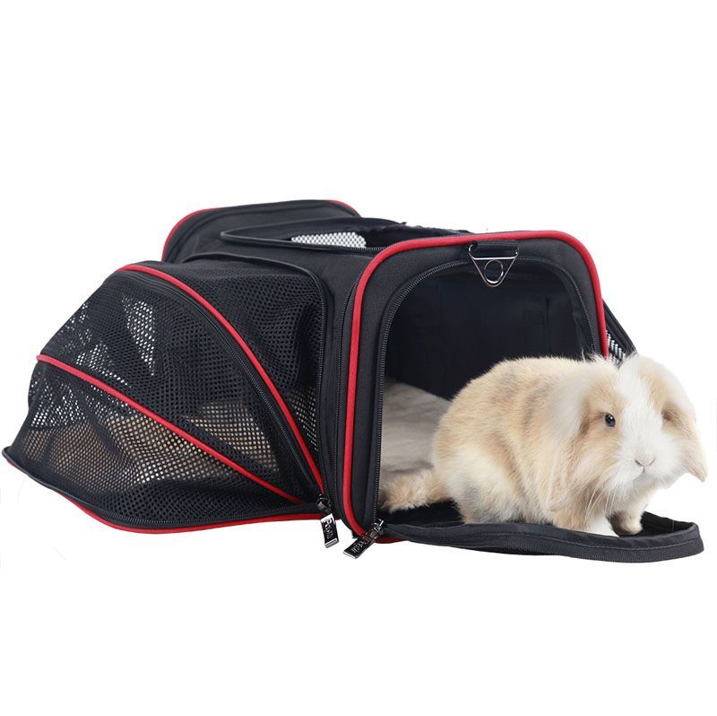 Portable Shoulder Travel Pet Carrier Bag side open big capacity-backpack wholesaler